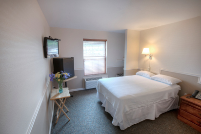 ADA (handicap accessible) room with one full-size bed.